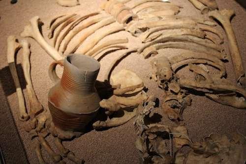 """Der """"Ötzi vom Ostwall"""": Erfahre mehr zum rätselhaften Skelettfund. Bild: Jochen Musebrink"""