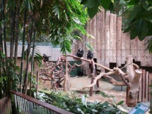 Zoo Krefeld Affenhaus
