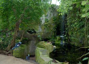 Zoo Köln Tropenhaus