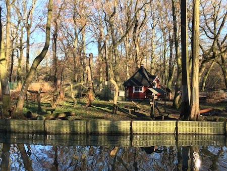 Waschbärgehege im Tierpark Kaisergarten Oberhausen © VIP Ruhrgebiet