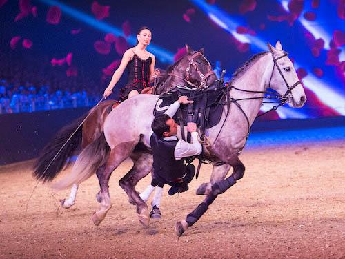 """Impression von der Premiere der Hop Top Show 2015 Im Bild: Rasantes Showbild von den Hasta Luegos aus Frankreich. Unter dem Motto """"Aus Liebe zum Pferd"""" rückt die EQUITANA 2015 vom 14. bis 22. März die gemeinsame Passion von klassischen Reitsportlern, Freizeit- und Westernreitern, passionierten Züchtern und Pferdeliebhabern in den Mittelpunkt. In 17 Messehallen erleben die Besucher die ganze Welt des Pferdesports, haben die einzigartige Möglichkeit, 1.000 Pferde und seltene Pferderassen an einem Ort zu sehen und sich über pferdegerechte Ausbildungsmethoden und Haltung zu informieren. --- 14-03-2015/Essen/Germany Foto:Rainer Schimm/©MESSE ESSEN GmbH"""