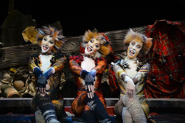 Das magische Musical Cats in NRW erleben. Lassen Sie sich von starken Charakteren und einer unglaublichen Show mitreißen. Foto BB Promotion © Alessandro Pinna